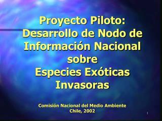 Proyecto Piloto: