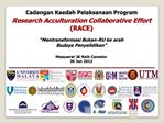 Research Acculturation Collaborative Effort  RACE