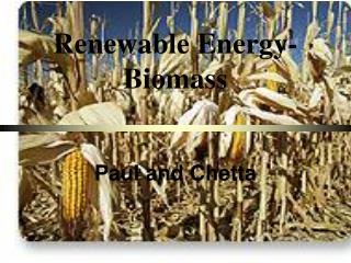 Renewable Energy-Biomass