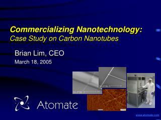 Commercializing Nanotechnology:  Case Study on Carbon Nanotubes