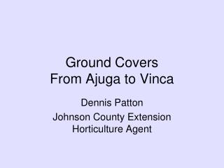 Ground Covers From Ajuga to Vinca