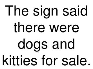 The sign said there were dogs and kitties for sale.