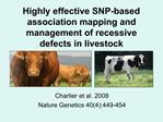 Highly effective SNP-based association mapping and management of recessive defects in livestock