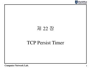 TCP Persist Timer