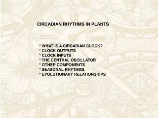 CIRCADIAN RHYTHMS IN PLANTS