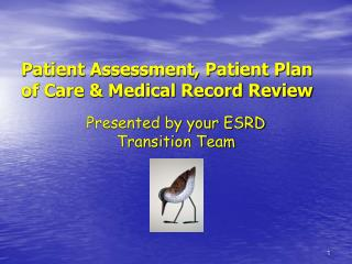Patient Assessment, Patient Plan of Care  Medical Record Review