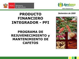 PROGRAMA DE REJUVENECIMIENTO y  MANTENIMIENTO DE CAFETOS