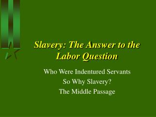 Slavery: The Answer to the Labor Question