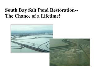 South Bay Salt Pond Restoration--  The Chance of a Lifetime