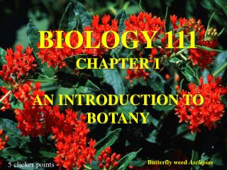 BIOLOGY 111 CHAPTER 1  AN INTRODUCTION TO BOTANY