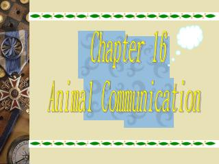 Chapter 16 Animal Communication