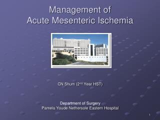 Management of  Acute Mesenteric Ischemia
