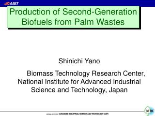 Production of Second-Generation Biofuels from Palm Wastes