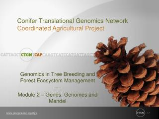 Genomics in Tree Breeding and Forest Ecosystem Management ----- Module 2   Genes, Genomes and Mendel