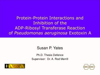 Protein-Protein Interactions and  Inhibition of the  ADP-Ribosyl Transferase Reaction of Pseudomonas aeruginosa Exotoxin