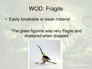 WOD: Fragile