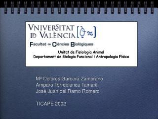 M  Dolores Garcer  Zamorano Amparo Torreblanca Tamarit Jos  Juan del Ramo Romero  TICAPE 2002