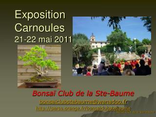 Exposition  Carnoules 21-22 mai 2011