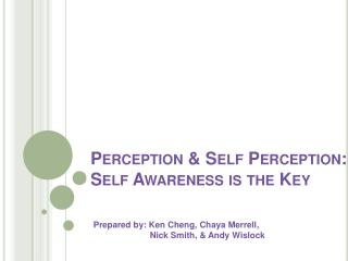 Perception  Self Perception:               Self Awareness is the Key