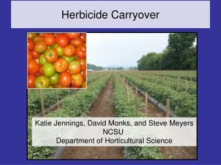 Herbicide Carryover