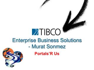 Enterprise Business Solutions - Murat Sonmez
