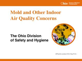 Mold and Other Indoor Air Quality Concerns