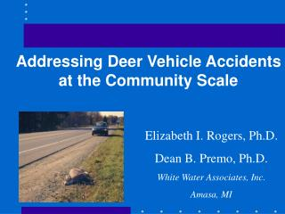 Addressing Deer Vehicle Accidents at the Community Scale