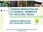 CADENA PRODUCTIVA DE LA GUADUA - BAMB  EN EL VALLE DEL CAUCA