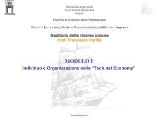 MODULO I Individuo e Organizzazione nella  Tech Economy