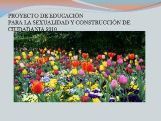 PROYECTO DE EDUCACI N  PARA LA SEXUALIDAD Y CONSTRUCCI N DE CIUDADANIA 2010