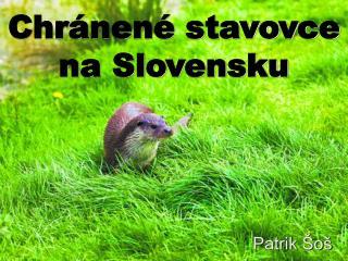 Chr nen  stavovce na Slovensku