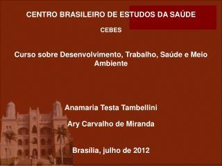 CENTRO BRASILEIRO DE ESTUDOS DA SA DE   CEBES   Curso sobre Desenvolvimento, Trabalho, Sa de e Meio Ambiente     Anamari