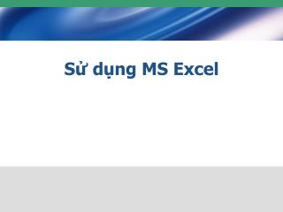 S dng MS Excel