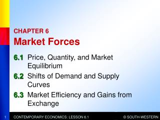 CHAPTER 6  Market Forces