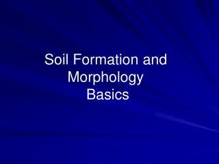 Soil Formation and  Morphology  Basics