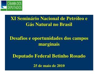 XI Semin rio Nacional de Petr leo e G s Natural no Brasil   Desafios e oportunidades dos campos marginais  Deputado Fede