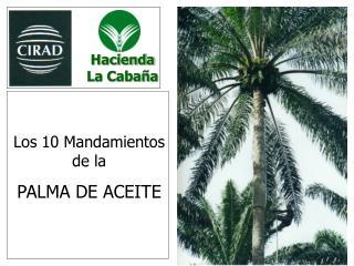 Hacienda La Caba a