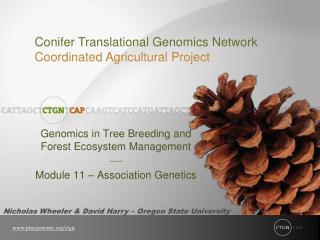 Genomics in Tree Breeding and Forest Ecosystem Management ----- Module 11   Association Genetics