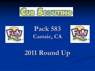 Pack 583 Castaic, CA  2011 Round Up