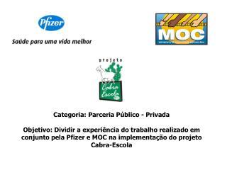 Categoria: Parceria P blico - Privada  Objetivo: Dividir a experi ncia do trabalho realizado em conjunto pela Pfizer e M