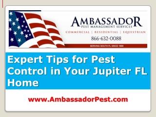 Pest Control Jupiter Expert Tips