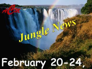 February 20-24, 2012