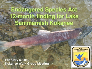 Use of the  Endangered Species Act in Alaska