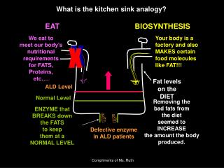 What is the kitchen sink analogy