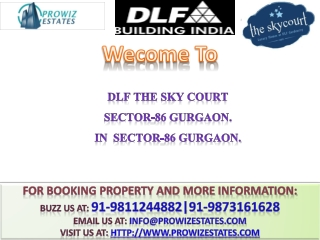 DLF The sky Court Launch @ 91-9811244882