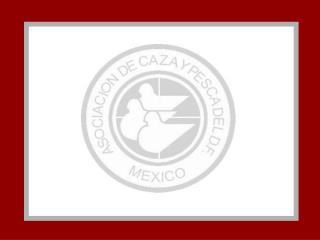 C. P. D. F., A. C.  TE INVITA AL   GRAN PREMIO MEXICO   COLOMBAIRE TRADICIONAL   1 000,000.00 PESOS EN PREMIOS GARANTIZA