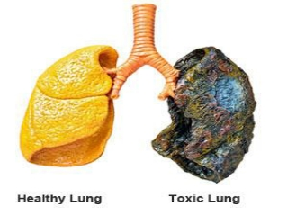 Cleaning Tar From Lungs