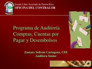 Programa de Auditor a Compras, Cuentas por Pagar y Desembolsos