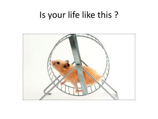 Is your life like this