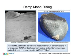 Damp Moon Rising